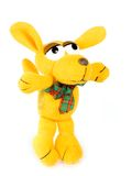 Toy dog. Wanted colour on white background royalty free stock images