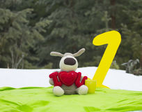 Toy Dog Congratulates with Anniversary Stock Image