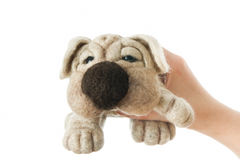 Toy dog in a gift. Toy dog on white background. Gift for holiday. Handmade Felt stock image