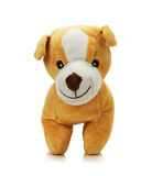Toy dog isolated on a white background Royalty Free Stock Photography