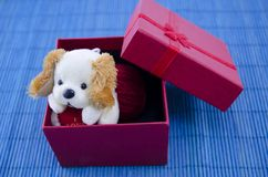 A toy dog in a red present box Royalty Free Stock Photos