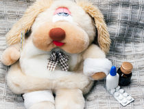 Toy dog is sick Stock Photos