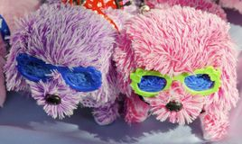 Toy Dogs Stock Image