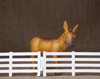 Toy donkey standing behind a fence Royalty Free Stock Images