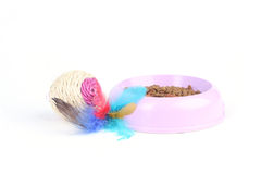 Toy with dry cat food in a bowl Royalty Free Stock Image