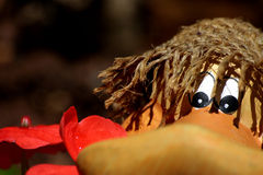 Toy duck. A closeup, partial view of the face of a toy duck Stock Images