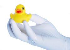 Toy duck Stock Photos