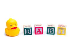 Toy Duck stock images