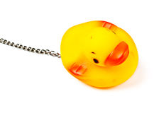 Toy duck for bath Stock Image