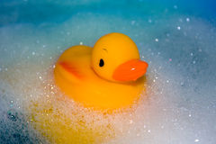 Toy duck in the bath. Toy duck swimming in the bath with foam royalty free stock photography