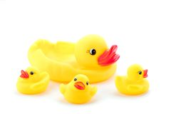 Toy Duck Family Stock Photography