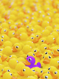 Toy duck Stock Image