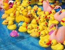 Toy ducks Stock Photos