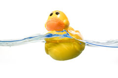 Toy Ducky in water Stock Images