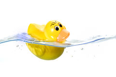 Toy Ducky in water. Classic Squeak Toy Rubber Ducky in water royalty free stock photo