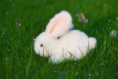 Toy Easter Bunny Royalty Free Stock Photo