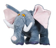 The toy elephant. The toy soft elephant on a white background stock photography