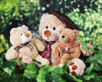 Toy Father, Son and Daughter Bears Royalty Free Stock Images