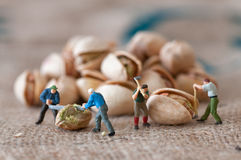 Toy figures of lumbermen with a peanut Stock Photos