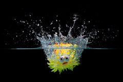 Toy fish splash into water Stock Images
