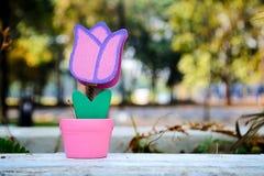 Toy Flower avec l'herbe dans le Saint Valentin Photo stock