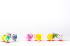 Toy fluffy easter chicks Stock Photos
