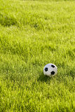 Toy football on the grass. Toy football on the green grass Royalty Free Stock Images