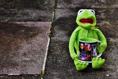 Toy frog holding tea mug