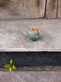 Toy frog sitting on the contry porch. Royalty Free Stock Image