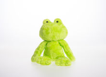 Toy or frog soft toy on the background. Stock Photo
