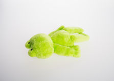 Toy or frog soft toy on the background. Royalty Free Stock Image