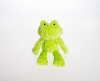 Toy or frog soft toy on the background. Stock Photography