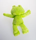 Toy or frog soft toy on the background. Royalty Free Stock Photography
