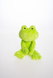 Toy or frog soft toy on the background. Royalty Free Stock Photos