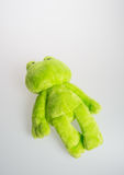 Toy or frog soft toy on the background. Stock Photos
