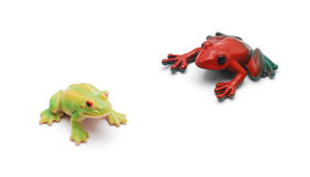 Toy frogs Royalty Free Stock Photography