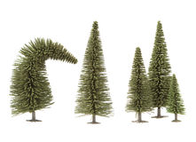 Toy fur-trees Stock Photo