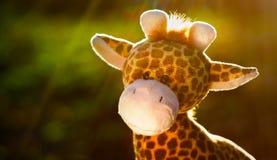 Toy giraffe outdoors. At sunset light stock image