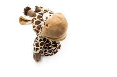 Toy giraffe white background Stock Photography