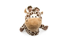 Toy giraffe white background Royalty Free Stock Photo