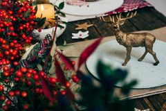 Toy golden reindeer, on the plate at the Christmas table, surrou. Nded by nandinas Stock Photo