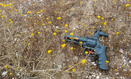 Toy Gun and Yellow Flowers Royalty Free Stock Photos