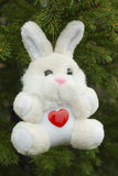 Toy hare Royalty Free Stock Images