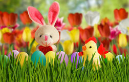 Toy hare,chick and Easter eggs in grass close-up Stock Photography