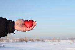 Toy heart in a palm Royalty Free Stock Image