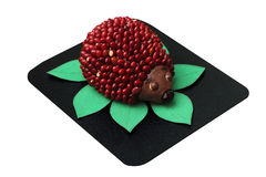 Toy hedgehog made from plasticine and beans isolated on white Royalty Free Stock Images