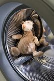 Toy Hedgehog in Washing Machine Royalty Free Stock Image