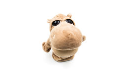 Toy hippo white background Royalty Free Stock Photography