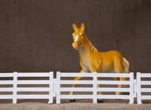 Toy horse behind fence Stock Photography