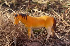 Toy horse photographed outside in dry grass stock photos